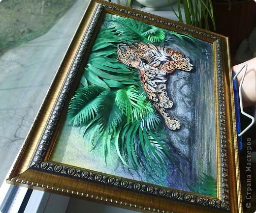 Леопард фото 16