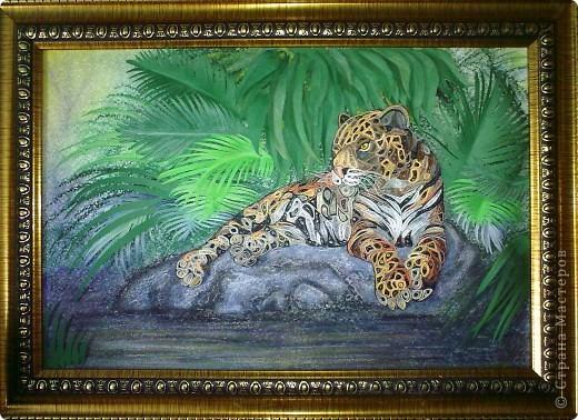 Леопард фото 18