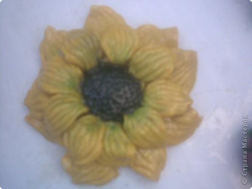 овощи фото 2