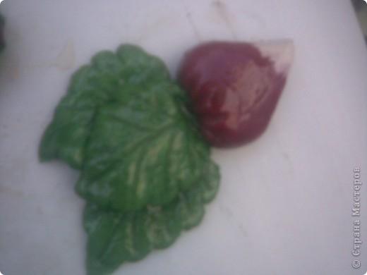 овощи фото 3