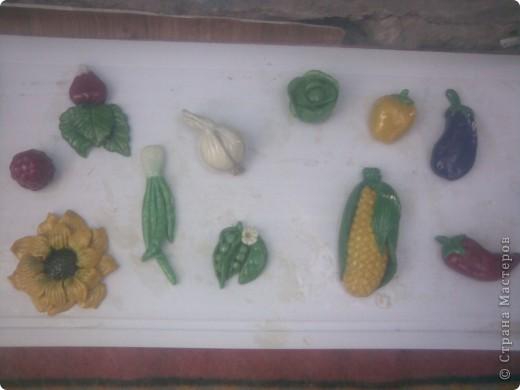 овощи фото 11