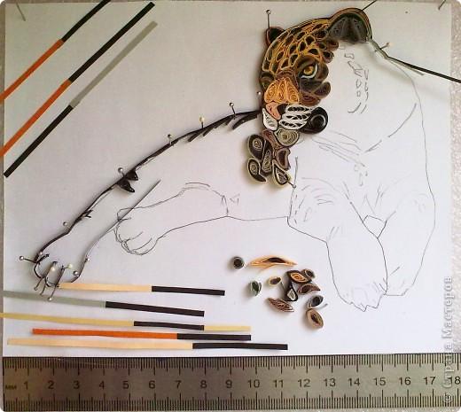 Леопард фото 3