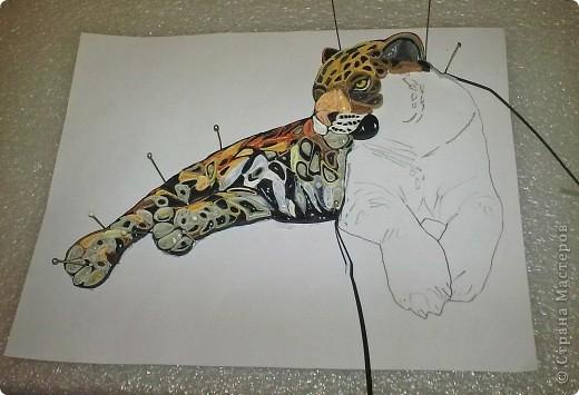 Леопард фото 4