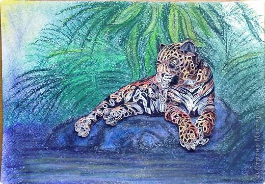 Леопард фото 9