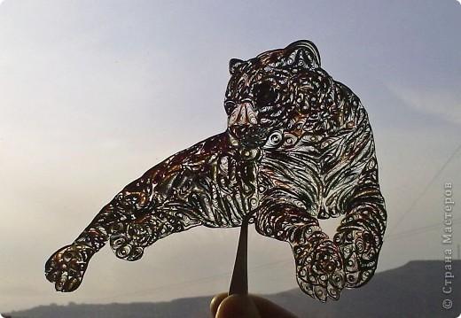 Леопард фото 7