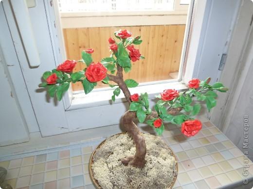 Розовое деревце, типа бансай. Сделано из глины модерн. Сама бы наврятли взялась за такую большую работу, на курсах дали задание и вот что получилось. фото 6