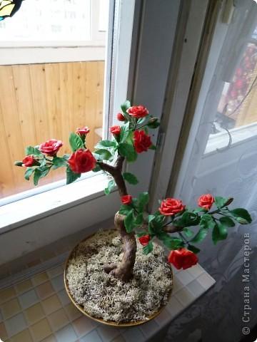 Розовое деревце, типа бансай. Сделано из глины модерн. Сама бы наврятли взялась за такую большую работу, на курсах дали задание и вот что получилось. фото 1