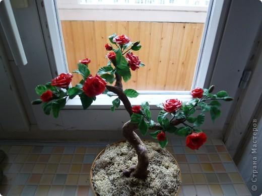 Розовое деревце, типа бансай. Сделано из глины модерн. Сама бы наврятли взялась за такую большую работу, на курсах дали задание и вот что получилось. фото 4