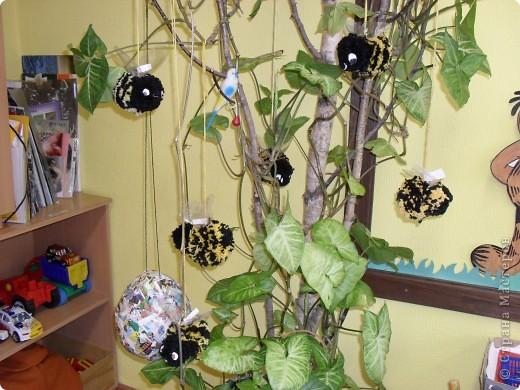 Пришла весна,природа оживает.Вот такие пчелы прилетели к нам.Почти все делали дети 6 лет.Я помогла связать помпоны и пришить крылышки,и разрезали помпоны вместе.Идея не моя,спасибо автору.А еще на дереве  сохнет домик для пчел,нам осталось проделать вход и покрасить. фото 1