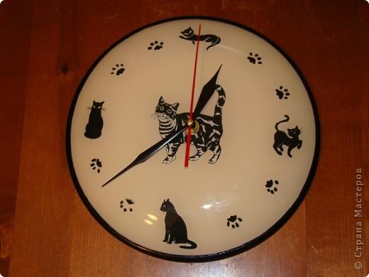 Мои любимые кошачьи  часы