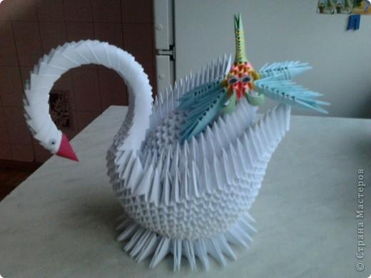 Лебедь и стрекоза фото 2