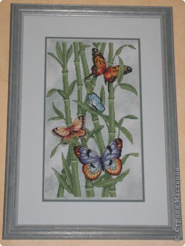 А бабочка крылышками бяк-бяк-бяк-бяк  фото 1