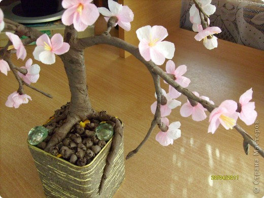 От яблоневых веточек остались заготовки лепесточков и пестиков-тычинок......стоят в стаканчиках .....такие нежные , манящие....... фото 3
