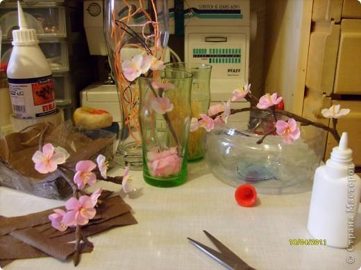 От яблоневых веточек остались заготовки лепесточков и пестиков-тычинок......стоят в стаканчиках .....такие нежные , манящие....... фото 5
