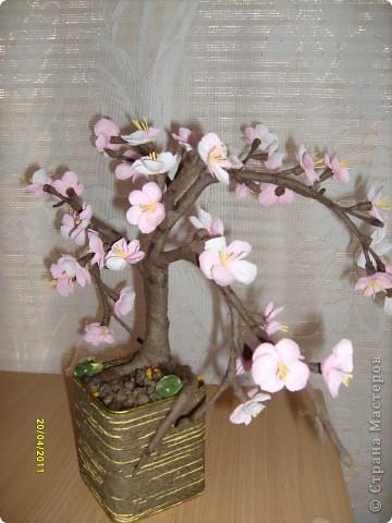 От яблоневых веточек остались заготовки лепесточков и пестиков-тычинок......стоят в стаканчиках .....такие нежные , манящие....... фото 1