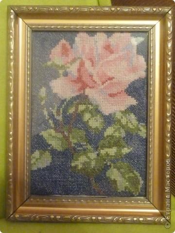 вышивка крестом цветы фото 1