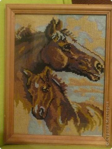 вышивка крестом животные фото 1