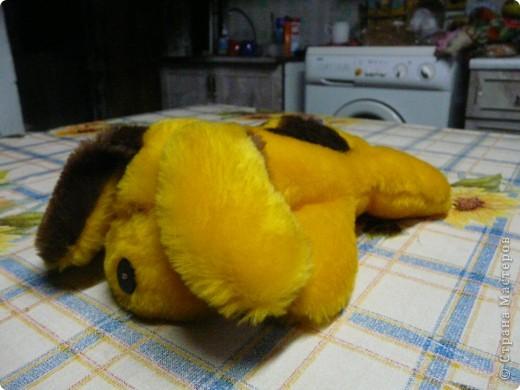 спит.... фото 1