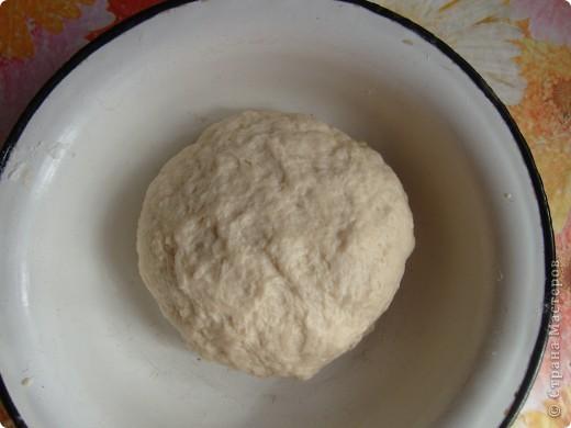 Вот решила поделиться с вами нашим любимым пирогом и надеюсь, он будет украшать ваши семейные вечера своим восхитительным вкусом. Этот пирог я готовлю с разными начинками. Сейчас пост и я приготовила его с грибами и капустой(моя самая любимая начинка), но еще я готовлю его с картошкой и печенью, просто с картошкой и жаренным луком, капуста с яйцом. рыбой...в общем полный полет фантазий. фото 3