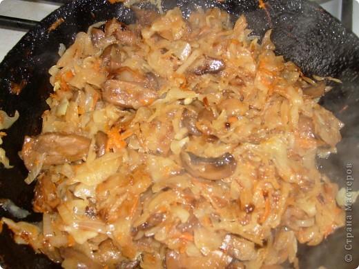 Вот решила поделиться с вами нашим любимым пирогом и надеюсь, он будет украшать ваши семейные вечера своим восхитительным вкусом. Этот пирог я готовлю с разными начинками. Сейчас пост и я приготовила его с грибами и капустой(моя самая любимая начинка), но еще я готовлю его с картошкой и печенью, просто с картошкой и жаренным луком, капуста с яйцом. рыбой...в общем полный полет фантазий. фото 9