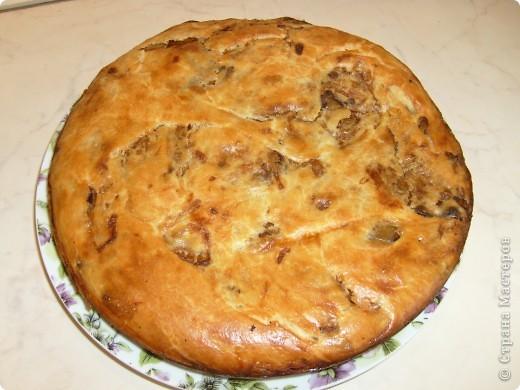 Вот решила поделиться с вами нашим любимым пирогом и надеюсь, он будет украшать ваши семейные вечера своим восхитительным вкусом. Этот пирог я готовлю с разными начинками. Сейчас пост и я приготовила его с грибами и капустой(моя самая любимая начинка), но еще я готовлю его с картошкой и печенью, просто с картошкой и жаренным луком, капуста с яйцом. рыбой...в общем полный полет фантазий. фото 27