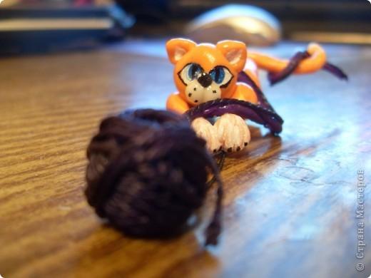 Котик фото 1