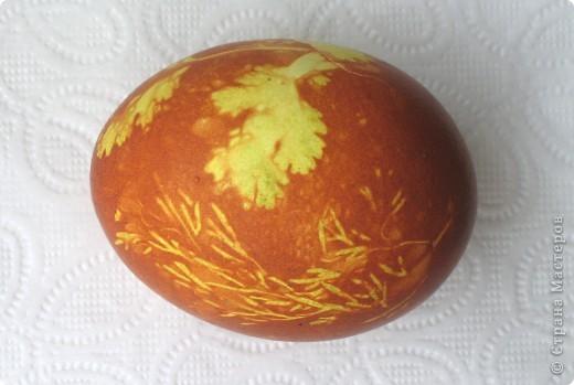 для тех кто ещё не успел покрасить яйца или на будущее))) фото 1