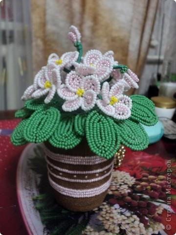 Вот такие фиалки для мамочки получились )  Т.к. цветочки очень миниатюрные маленького кашпо в магазине на нали, поэтому пришлось делать самим. Сына мне в этом деле очень помогал )  фото 1
