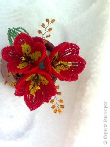 Бисероплетение Тюльпаны