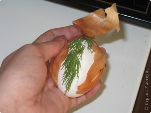 для тех кто ещё не успел покрасить яйца или на будущее))) фото 11