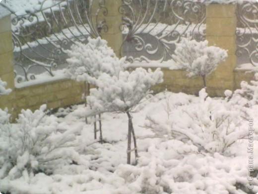 Вчера утром (21 апреля) ЮГ РОССИИ! Выглянув в окно , я обнаружила вот такой пейзаж.  фото 4