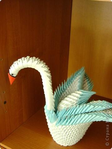 Птицы сделаны по мастер-классам, которые размещены на сайте. фото 2