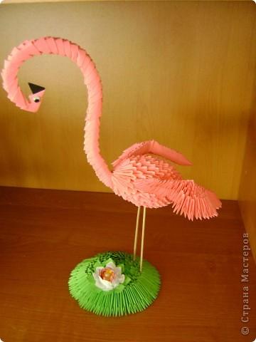 Птицы сделаны по мастер-классам, которые размещены на сайте. фото 4