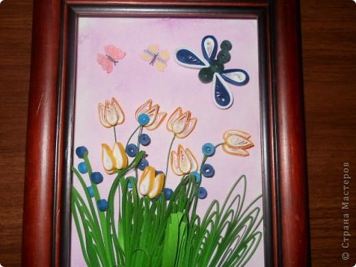 Это тюльпаны фото 1
