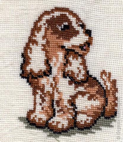 По-моему, это щенок сенбернара. Он вдохновил меня на следующие вышивки фото 3