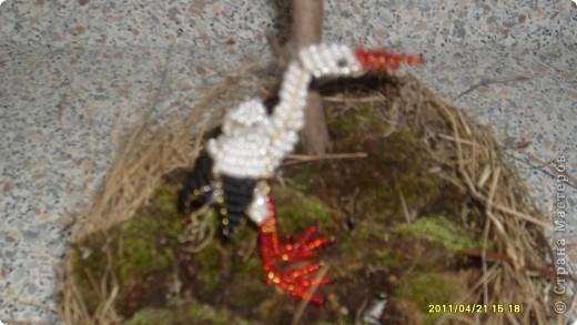 Эта работа была сделана ко дню птиц фото 3