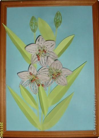 Обожаю лилии и увидев в Стране Мастеров МК сразу приступила к изготовлению фото 1