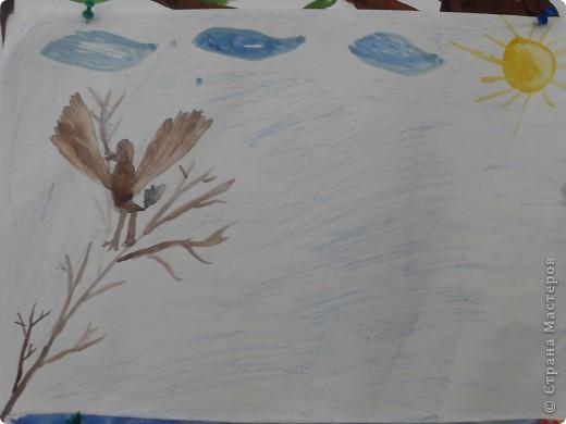 Все мечтают о тепле, летних каникулах, а прилет птиц приближает лето. фото 10