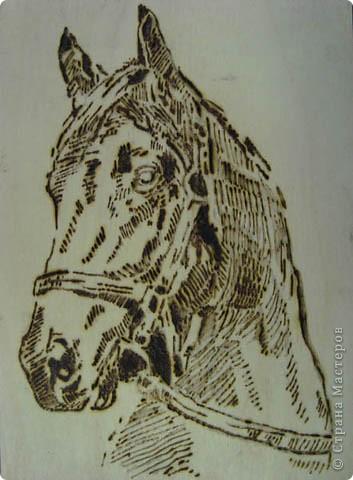 """Валентин, 6-й класс. Панно """"Голова лошади"""" фото 2"""