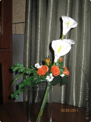 опять розы фото 1