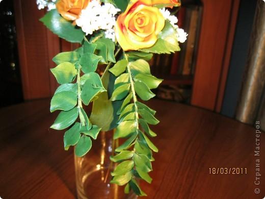 опять розы фото 2