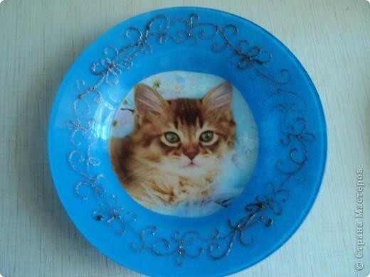 Пополнение тарелок фото 4
