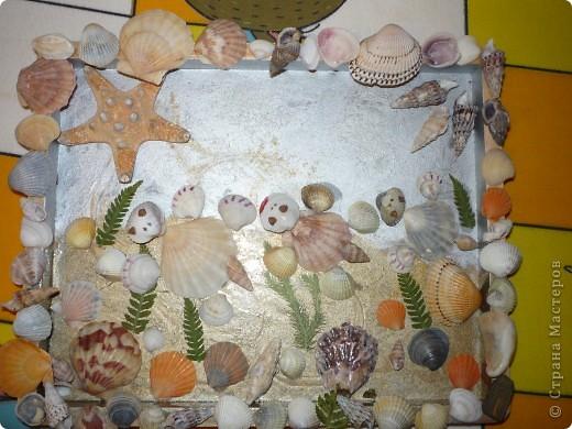 Морское путешествие черепашек