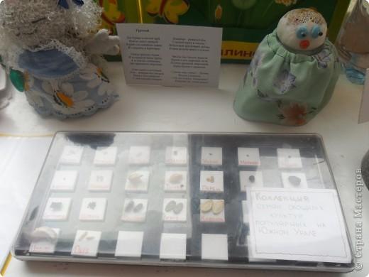 """Недавно в нашем детском саду прошел конкурс """" Огород на подоконнике"""". Наша группа заняла первое место. Хочу поделиться опытом, так как знаю, что в интернете подобного материала мало. фото 5"""