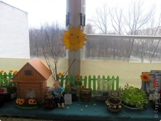 """Недавно в нашем детском саду прошел конкурс """" Огород на подоконнике"""". Наша группа заняла первое место. Хочу поделиться опытом, так как знаю, что в интернете подобного материала мало. фото 11"""