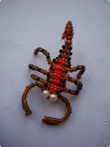 Cкорпиончик фото 1