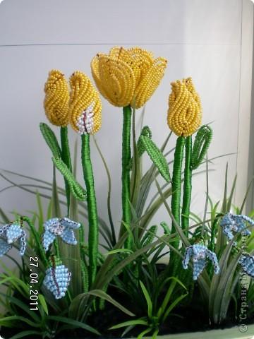 Эта полянка с тюльпанчиками и первоцветами сделана в подарок для сестры.  фото 2