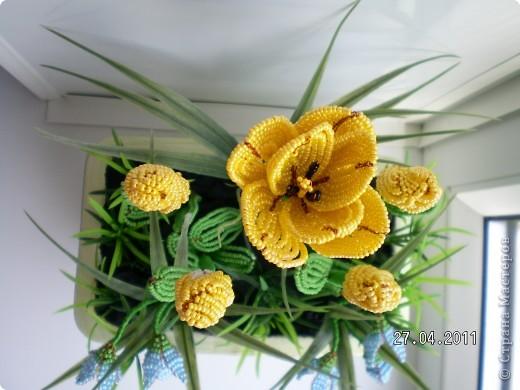 Эта полянка с тюльпанчиками и первоцветами сделана в подарок для сестры.  фото 3