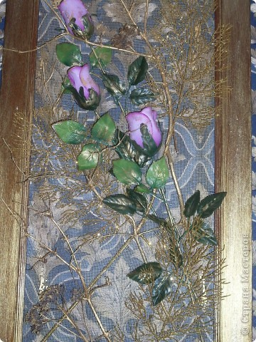 Цветы-моя слабость фото 2