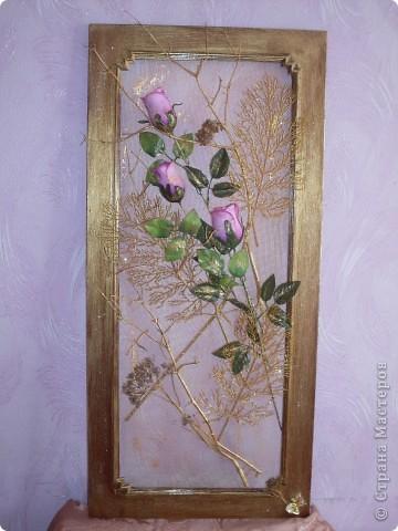 Цветы-моя слабость фото 1